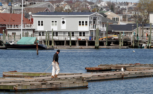 """Gloucester: George Sibley works on getting his floats in the water off Rocky Neck yesterday morning. """"I'm a laborer and lawyer,"""" he says. """"I try to get a few of these out in the morning and then I work on my cases the rest of the day."""" Photo by Kate Glass/Gloucester Daily Times"""