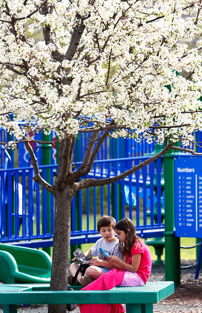 Rockport: Jacb Burnham, 9, and his friend Alexia Vidinha, 9, play with their video games under a tree at the Amelia Grace Place playground Wednesday afternoon. Mary Muckenhoupt/Gloucester Daily Times