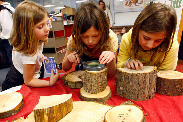 Gloucester: Sarah Orlando, 9, Center and Carli Heckman, 9, count tree rings as Sarah's little sister Kaci Orlando, 5, left, looks on at the Earth Day/Energy Fair held at West Parish Elementary School and run by the PTO Friday night. The Life of a Tree table was run by Jim Groleau and helped kids understand that the rings of a tree record how old the tree is.  Mary Muckenhoupt/Gloucester Daily Times