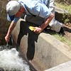 ALLEGRA BOVERMAN/Staff photographer. Gloucester Daily Times. Gloucester: Eric Hutchins, habitat restoration specialist at NOAA, checks on the status of the Little River Fish Ladder off Magnolia Avenue on Tuesday morning.