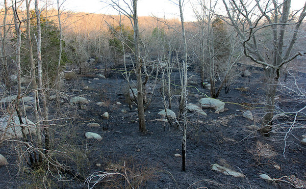 ALLEGRA BOVERMAN/Staff photo. Gloucester Daily Times. Gloucester: The scorched earth caused by the brushfire in Dogtown on Thursday afternoon.
