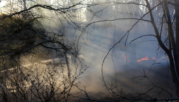 ALLEGRA BOVERMAN/Staff photo. Gloucester Daily Times. Gloucester: A bit of the brushfire in Dogtown on Thursday afternoon.