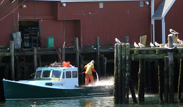 ALLEGRA BOVERMAN/Staff photographer. Gloucester Daily Times. Gloucester: A lobster boat is hosed down in the inner harbor on Monday in Gloucester.