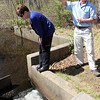 ALLEGRA BOVERMAN/Staff photographer. Gloucester Daily Times. Gloucester: Eric Hutchins, habitat restoration specialist at NOAA, and Kristen Ferry, a consultant at NOAA, check on the status of the Little River Fish Ladder off Magnolia Avenue on Tuesday morning.