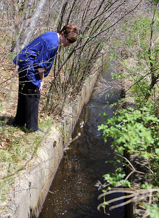 ALLEGRA BOVERMAN/Staff photographer. Gloucester Daily Times. Gloucester: Kristen Ferry, a consultant at NOAA, checks on the status of the Little River Fish Ladder off Magnolia Avenue on Tuesday morning.
