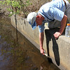 ALLEGRA BOVERMAN/Staff photographer. Gloucester Daily Times. Gloucester: Eric Hutchins, habitat restoration specialist at NOAA, checks on the status of the Little River Fish Ladder off Magnolia Avenue on Tuesday morning. He was showing where the water level usually is; it's down a lot right now.