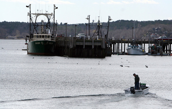 ALLEGRA BOVERMAN/Staff photo. Gloucester Daily Times. Gloucester: Heading out into the harbor from Cripple Cove Public Landing on Wednesday afternoon.