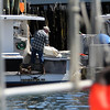 ALLEGRA BOVERMAN/Staff photographer. Gloucester Daily Times. Gloucester: Jim Lane of Gloucester tidies up his lobster boat, Mar-Stina, in the city wharf at the 1-4, C-2 site on Monday morning.
