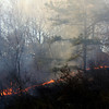 ALLEGRA BOVERMAN/Staff photo. Gloucester Daily Times. Gloucester: The leading edge of the brushfire in Dogtown on Thursday afternoon.