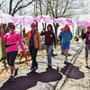 Desi Smith/Staff photo.     From left to right, Jackie Ganim-Defalco, Beth Williams, Pamela Stratton, Leslie Heffron and Ruth Worall all from Gloucester, take part in the 29th Annual Pride Stride Walk that started and ended at Stage Fort Park Sunday afternoon.  The group was walking to support the Artesian.   April 24,2016