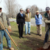 DAVID LE. Gloucester Times. From left, Jack O'Brien from O'Brien Landscape and Tree Service, Director of the Memorial Tree Program, Mimi McDougal, Directors Joe Sabella and Judi Shipman, and President George Smith, share a laugh as they spread mulch around a freshly planted Norway Spruce tree near the exit of the Manchester/Essex High School on Friday morning. 4/22/11.
