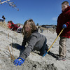 Gloucester: Emily Briere and Jared Lane, both students at Beeman Memorial Elementary School, plant dune grass at Good Harbor Beach as part of a partner project with Gorton's of Gloucester. The dune grass helps prevent beach erosion. Photo by Kate Glass/Gloucester Daily Times