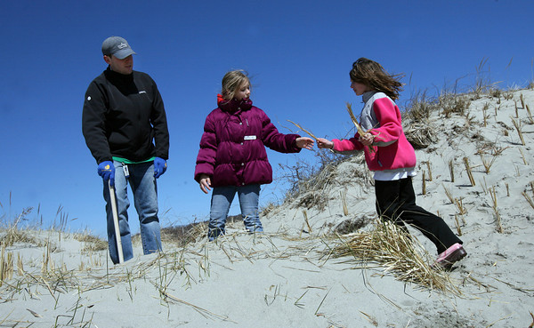 Gloucester: Eric Doe, a teacher at Beeman Memorial Elementary School, helps Emilie Orlando and Charlotte Foss plant dune grass at Good Harbor Beach as part of a partner project with Gorton's of Gloucester. The dune grass helps prevent beach erosion. Photo by Kate Glass/Gloucester Daily Times
