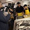 "Gloucester: Andrew Nelson of Action Video tapes Jim Turner of Turner Seafood as he teaches his son, James, how to fillet a fish. The segment will be part of the Healthy Gloucester Collaborative's ""Gloucester Through the Eyes of Youth."" The crew visited over a dozen locations in 2 days. Photo by Kate Glass/Gloucester Daily Times"