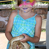 Gloucester: Emma Sperry, 6, holds a snake assisted by environmentalists from Cape Ann Vernal Pond at Gloucester Sidewalk Days on Saturday. Photo by Silvie Lockerova/Gloucester Daily Times