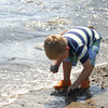 Charlie Virden, 3, of Manchester searches for rocks to toss into the water at White beach in Manchester yesterday. Photo by Maria Uminski/ Gloucester Daily Times