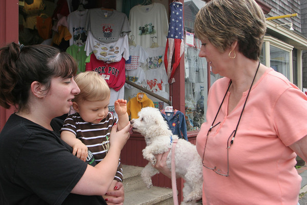 Karen Cleary,right, of Rockport holds up her Poodle, Gigi, for Brandon, 11 month, of Billerica to pet while in Rockport for the day with mom, Sandra. Photo by Maria Uminski/ Gloucester Daily Times