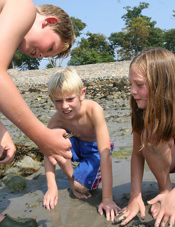 Manchester: Cyros Strickland of Montana, left, shows a crab he found at White Beach to Kellen Wise of Florida, center, and Hope Strickland of Montana, right, yesterday afternoon. The three were visiting Evan Randolph of Manchester for a week. Photo by Kate Glass/Gloucester Daily Times Monday, August 17, 2009