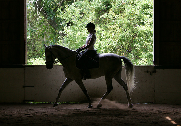Essex:  Diana Lane rides her horse Luminar around the ring during a lesson at Crescendo Farm in Essex Thursday afternoon. Mary Muckenhoupt/Gloucester Daily Times