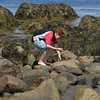 Rockport: Ethan Sieben, 11, looks for seashells and seaglass in between the rocks at Back Beach Saturday afternoon. Mary Muckenhoupt/Gloucester Daily Times