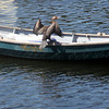 ALLEGRA BOVERMAN/Gloucester Daily Times A cormorant dries its wings while seated on the edge of a boat in the harbor in Manchester.