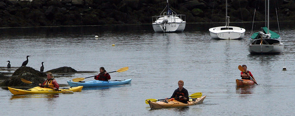ALLEGRA BOVERMAN/Staff photo. Gloucester Daily Times. Rockport: Kayakers negotiate around moored boats, rocks and cormorants to get back into Rockport Harbor on Friday.