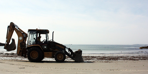 MARIA UMINSKI/Gloucester Daily Times. Dave Doucette of the Manchester Department of Public Works scoops up the red seaweed at White Beach in Manchester.