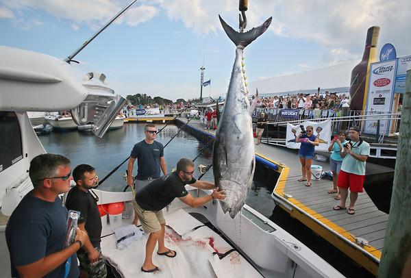 Bluefin Blowout