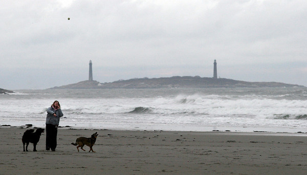 Gloucester: Jack Hewitt throws the ball for Harvey, left, and Henry, right, while walking on Good Harbor Beach yesterday afternoon. Photo by Kate Glass/Gloucester Daily Times