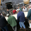 Essex: All available hands help carry a frame with a bulkhead attached through the muck and mire as the framing process of the schooner Pinky Ardelle is almost complete at H.A. Burnhams Boat Building and Design Saturday afternoon.  Despite all the man power this frame was too heavy to hoist into place without the help of a fork lift that could be used when the ground becomes less muddy. Mary Muckenhoupt/Gloucester Daily Times