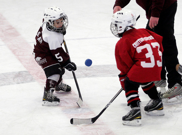 Gloucester: Brady Salah wins a faceoff during the Glosta Lobsta Christmas Classic Cross-Ice Mite Hockey Tournament at the Talbot Rink on Thursday. Photo by Kate Glass/Gloucester Daily Times