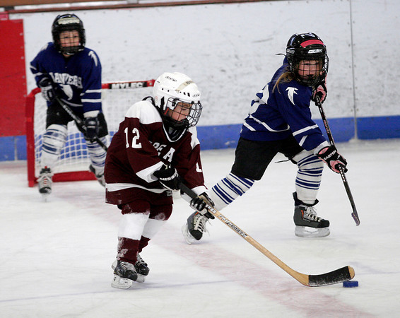 Gloucester: Robbie Huster brings the puck up the ice as Cape Ann plays Danvers in the Glosta Lobsta Christmas Classic Cross-Ice Mite Hockey Tournament at the Talbot Rink on Thursday. Photo by Kate Glass/Gloucester Daily Times