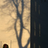 ALLEGRA BOVERMAN/Staff photo. Gloucester Daily Times. Manchester: Dramatic shadows and reflections on the outer walls of the First Congregational Church on Church Street on Thursday afternoon.