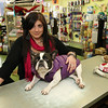 ALLEGRA BOVERMAN/Staff photo. Gloucester Daily Times. Gloucester: Stacy Interrante, manager of Animal Krackers, with her French bulldog, Dozer, in the Main Street store on Friday.