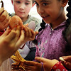 Second grader Darcy Muller holds the exoskeleton of a starfish as she looks at what other students are holding, such as an exoskeleton of a seahorse and various types of shells. This was during a fun science event put on by Hightouch Hightech at West Parish Elementary School on Monday afternoon. Jesse Poole/Gloucester Daily Times Dec. 12, 2011