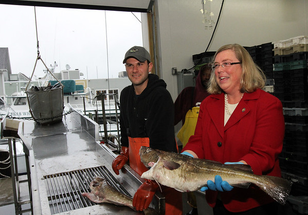 ALLEGRA BOVERMAN/Staff photo. Gloucester Daily Times. Gloucester: At the ribbon cutting for the new Base Gloucester fish auction mart at Fisherman's Wharf on Wednesday. Gloucester Mayor Carolyn Kirk holds a cod that was part of the first landings of fish at the Fisherman's Wharf by local fishermen on Wednesday. The S.S. Melon II was the first boat in after the ribbon cutting, and brought mostly pollack. Next to Kirk is Joe Ventimiglia.