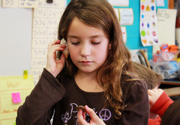 GLOUCESTER-Second grader Sophia Costa examines the exoskeleton of a seahorse as she listens to the ocean through a shell during a fun science event put on by Hightouch Hightech at West Parish Elementary School on Monday afternoon. Jesse Poole/Gloucester Daily Times Dec. 12, 2011