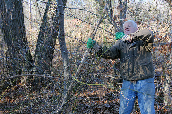 "Courtesy photo/Gloucester Daily Times.Rockport: Carl Gibbs of Rockport clears debris from the Nugent Stretch in Rockport on Tuesday afternoon. He had earlier cleared trash from the area, and was piling up dead tree limbs and branches neatly ""so it looks nicer in the spring."" He goes and clears roadsides like this as often as he can, and has done so no matter where he's lived, ""a little bit at a time."""