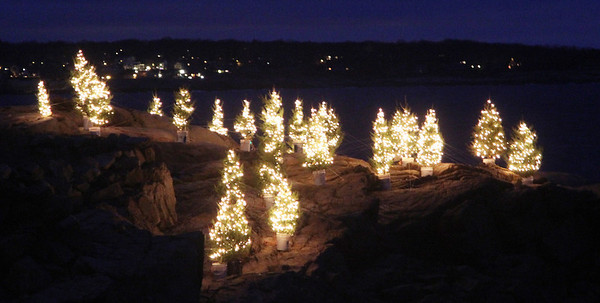 Allegra Boverman/Gloucester Daily Times. Greg Wilkinson of Rockport, set up these lighted trees on his waterfront property that is visible from Marmion Way in honor of the 16 children and adults killed in Newtown, CT.