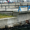 Allegra Boverman/Gloucester Daily Times. Damage along the Stacy Boulevard seawall very close to the Cut Bridge. Damage includes separation and cracking in the pavement and wall itself, and broken railings.