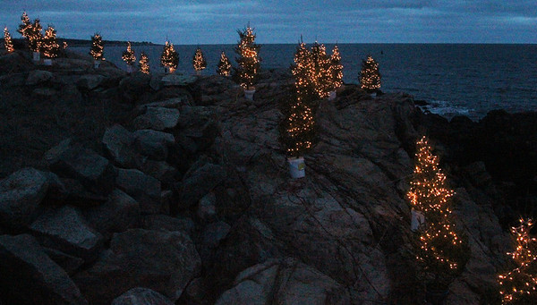 Allegra Boverman/Gloucester Daily Times. Greg Wilkinson of Rockport set up these lighted trees on his waterfront property that is visible from Marmion Way in honor of the 16 children and adults killed in Newtown, CT.