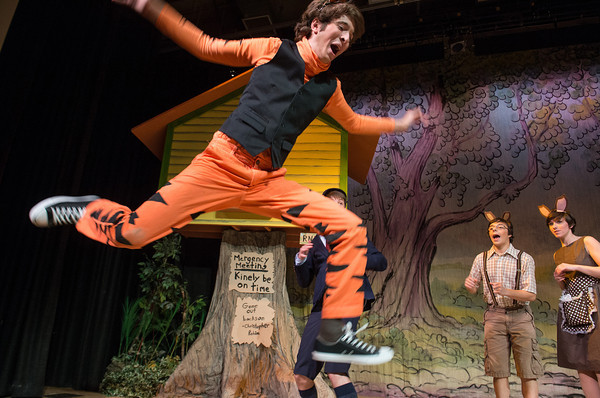 Desi Smith Staff photo/Gloucester Daily Times. Tigger played by Logan Trupiano, do what tiggers do best, bounce during a dress rehearsal Thursday night at Rockport High School in A.A.Milne's, The House at Pooh Coner. The shows will run Dec.13-15 at the John E. Lane Performing Arts Center at Rockport High School.