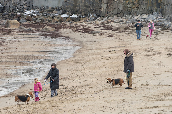 Desi Smith Staff photo/Gloucester Daily Times.  Lois Himmel and her granddaughter Isabella Scherbarth 4, of Rockport stop to to met a couple of basset hounds Saturday afternoon while walking on Front Beach in Rockport.  February 1,2013.
