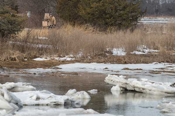 Desi Smith Staff photo/Gloucester Daily Times.    A artist paints a scene on the Cox Reservation just behind J T Farnham's in Essex Friday afternoon.   January 31,2013.