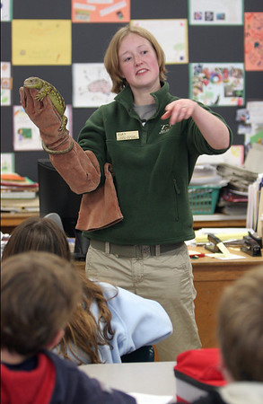 Essex: Nancy Romanik, an education program manager with Zoo New England shows fifth graders a skink lizard during career day at Essex Elementary School Thursday morning.  Various professions including, an architect, a forensic psychologist, a doctor, the President of Appleseads, and canine officers came to speak to the fifth graders of Essex and Manchester elementary schools. Mary Muckenhoupt/Gloucester Daily Times