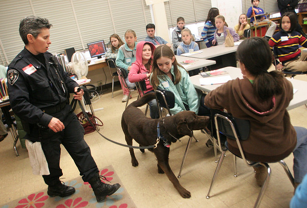 Essex: Lt. Joanne Karon, a canine officer with Essex County Sheriff's Department walks around a classroom at Essex Elementary School with her dog Buddy as he sniffs out planted evidence during career day Thursday morning.   Various professions including, an architect, a forensic psychologist, a doctor, the President of Appleseads, and workers from a local zoo and the aquarium came to speak to the fifth graders of Essex and Manchester elementary schools. Mary Muckenhoupt/Gloucester Daily Times