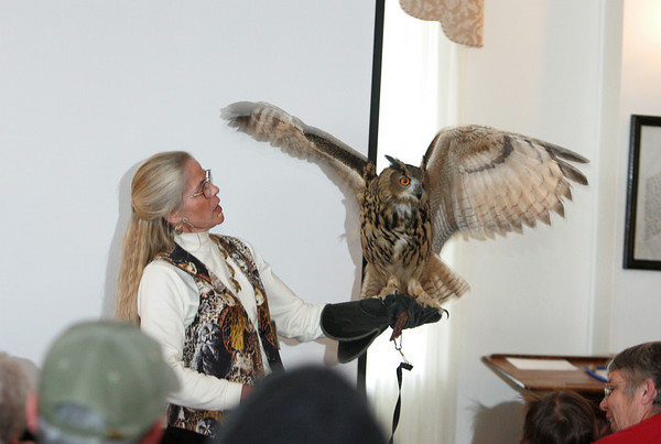 Gloucester: Marcia Wilson shows the crowd an eagle owl during Eyes on Owls at the Gloucester Elks Club as part of the Cape Ann Winter Birding Weekend sponsored by the Cape Ann Chamber of Commerce. The Eagle owl is the largest owl and is found in Asia and Europe. Mary Muckenhoupt/Gloucester Daily Times