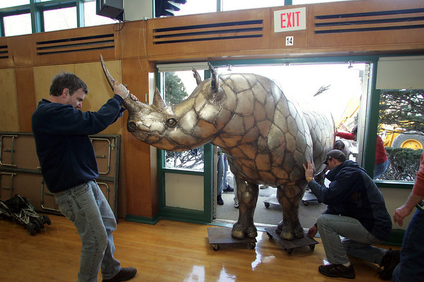 Essex: Artist Chris Williams helps pull in his 1,800 pound rhino into the cafeteria of the Essex Elementary School Friday afternoon. The rhino was on display for the school's Messy Art Night.