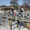 Manchester: A harp seal rests on some ice in Manchester Harbor by Masconomo Park Tuesday afternoon. A group of children from the Montessori School in Manchester were walked down to see the seal from a safe distance. Mary Muckenhoupt/Gloucester Daily Times