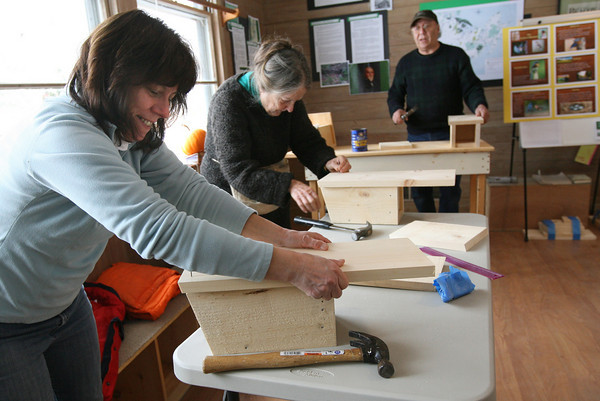 Gloucester: Laurie Himml ***SPELLING IS CORRECT*** positions the back on her Eastern bluebird birdhouse at the Cape Ann Discovery Center at Ravenswood Park yesterday. Some of the birdhouses made during the workshop will be hung at Coolidge Point and some participants could take home. The birds live near open meadows and should begin courting and building nests in the next couple weeks. Photo by Kate Glass/Gloucester Daily Times